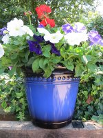 iberian-planter- Navy Blue